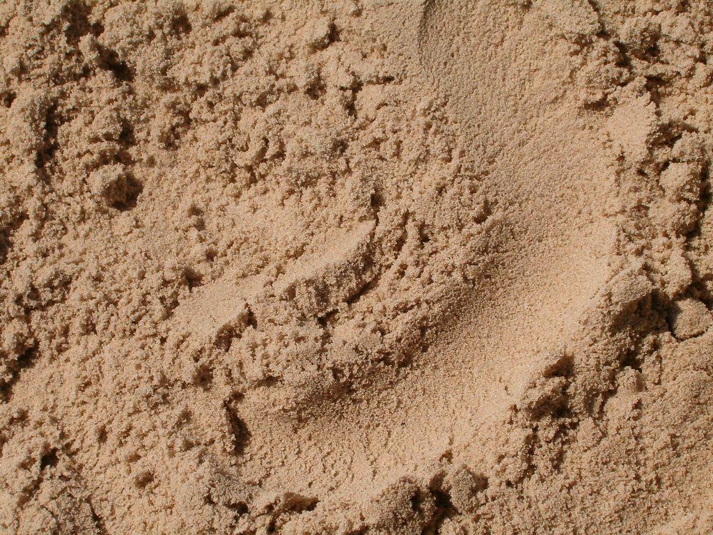 Доставка песка в Гатчине